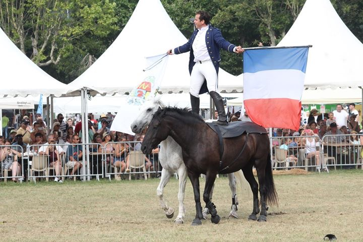 aucop-evenement-fete du cheval-levens-sonorisation-eclairage-location-materiel-audiovisuel-amsl equitation-carros-nice-marseille-paris-organisation-event