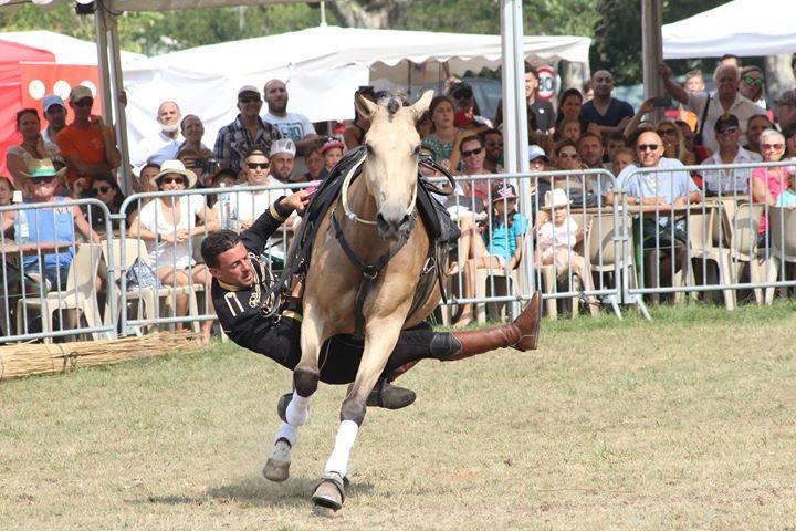 aucop-evenement-fete du cheval-levens-sonorisation-eclairage-location-materiel-audiovisuel-amsl equitation-carros-nice-marseille-paris-son-lumieres