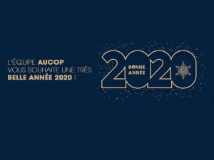 aucop-site-noel-evenement-event-audiovisuel-nice-paris-marseille-communication-lacoustics-shure-decoration-voeux-2020-reseaux-sociaux