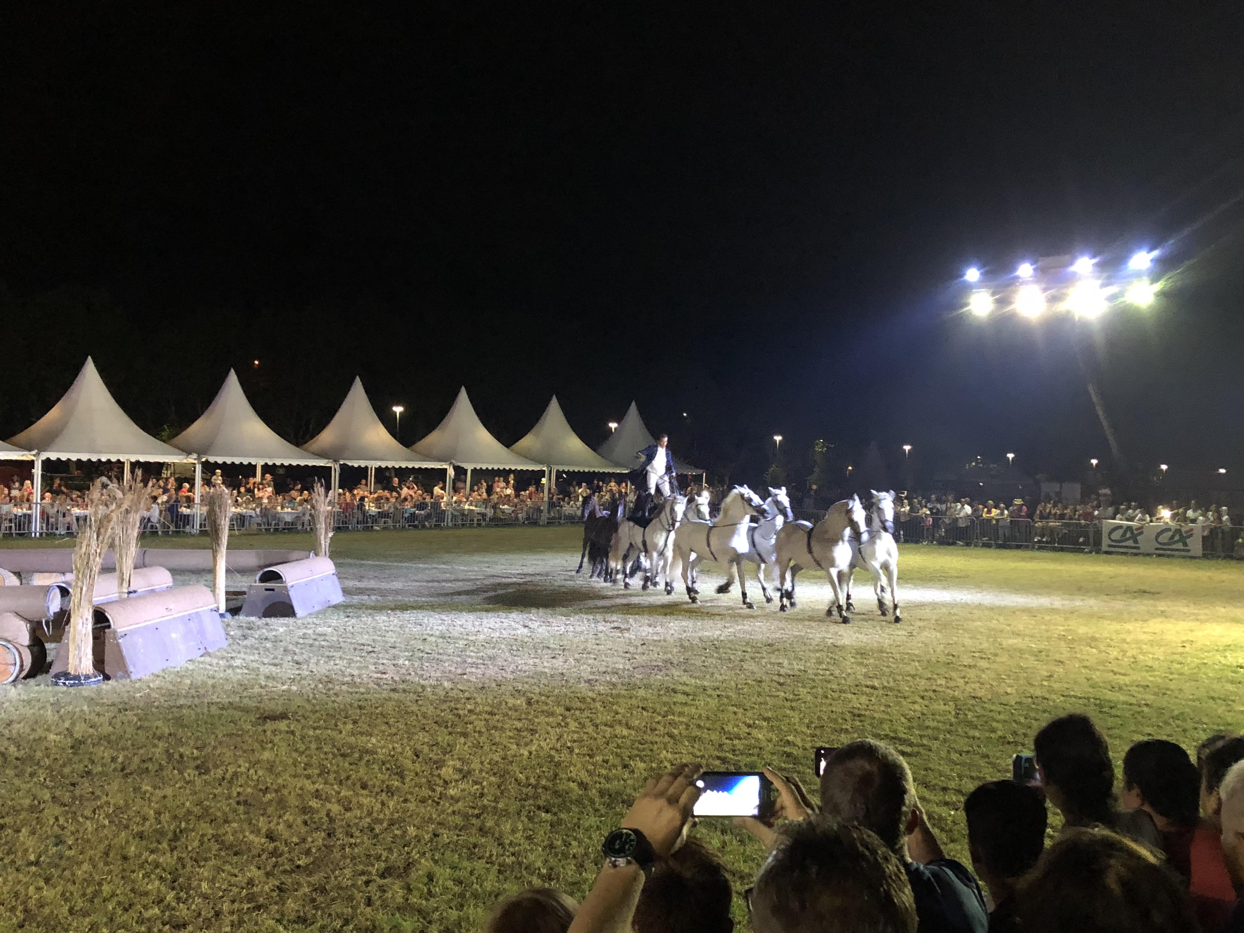 Fête du cheval à Levens-aucop-sonorisation-eclairage-location-materiel-audiovisuel-amsl equitation-nice-marseille-paris-son-lumieres-evenement-fete du cheval-levens-festivites
